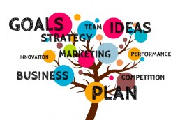 business-plan-baum-marketing-innovation-performance-competition-ideas-team-strategy-goals